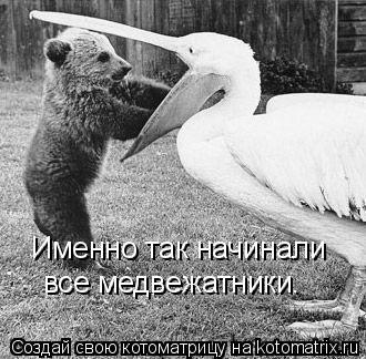 Котоматрица: Именно так начинали все медвежатники.