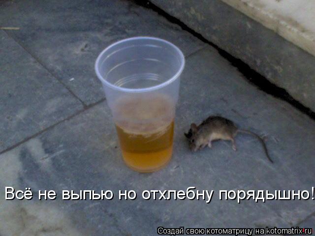 Котоматрица: Всё не выпью но отхлебну порядышно!