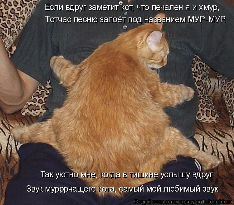 Котоматрица: Если вдруг заметит кот, что печален я и хмур, Tотчас песню запоёт под названием МУР-МУР.  Так уютно мне, когда в тишине услышу вдруг Звук муррр
