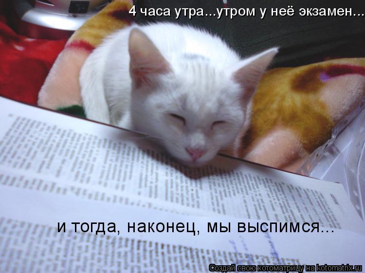 Котоматрица: 4 часа утра...утром у неё экзамен... и тогда, наконец, мы выспимся...