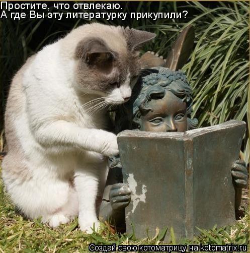 Котоматрица: Простите, что отвлекаю. А где Вы эту литературку прикупили?