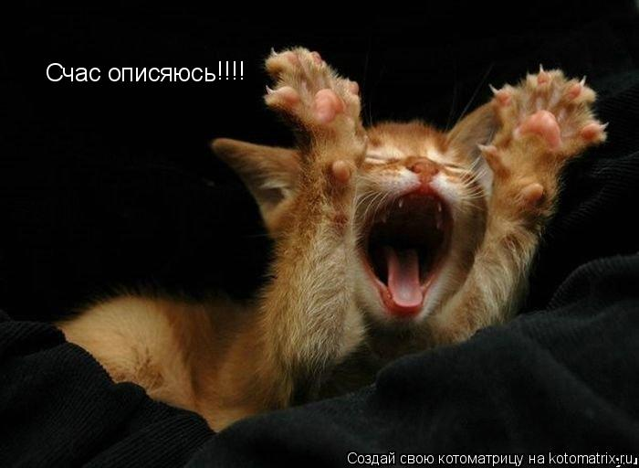 Котоматрица: Счас описяюсь !!!!