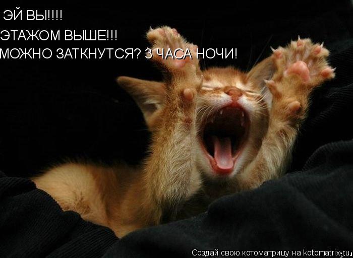 Котоматрица: ЭЙ ВЫ!!!! ЭТАЖОМ ВЫШЕ!!! МОЖНО ЗАТКНУТСЯ? 3 ЧАСА НОЧИ!