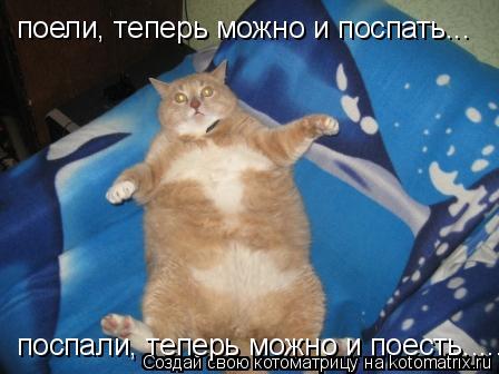 Котоматрица: поели, теперь можно и поспать... поспали, теперь можно и поесть.....