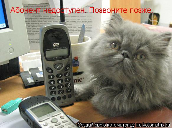 Котоматрица: Абонент недоступен. Позвоните позже.