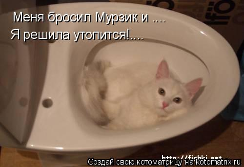Котоматрица: Меня бросил Мурзик и .... Я решила утопится!....