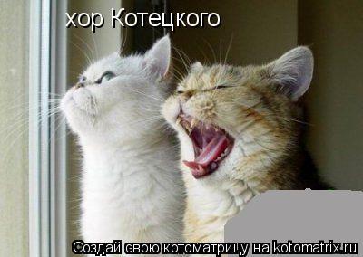Котоматрица: хор Котецкого