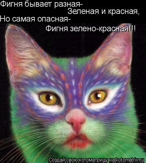 Котоматрица: Фигня бывает разная-  Зеленая и красная,  Но самая опасная-  Фигня зелено-красная!!!
