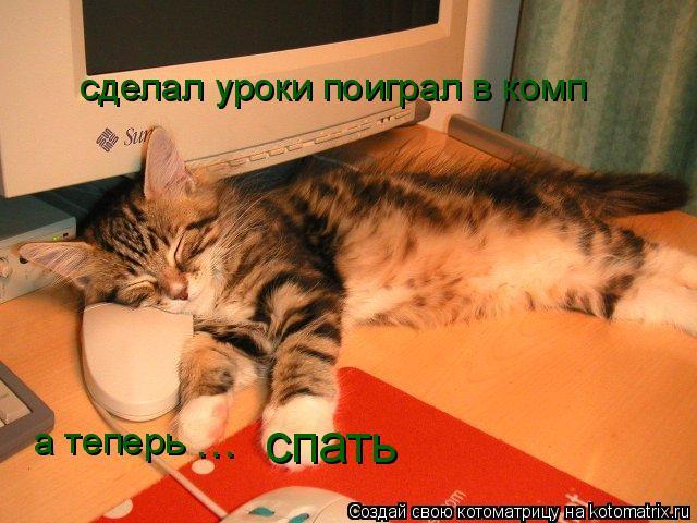 Котоматрица: сделал уроки поиграл в комп а теперь спать ...
