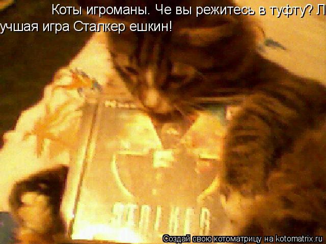 Котоматрица: Коты игроманы. Че вы режитесь в туфту? Лучшая игра года сталкер ешкин! учшая игра Сталкер ешкин!