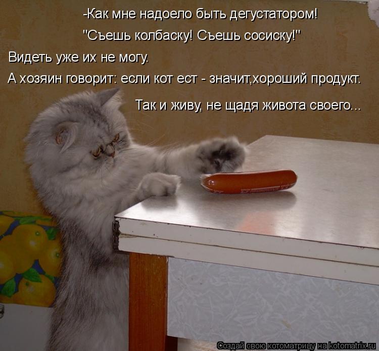 """Котоматрица: -Как мне надоело быть дегустатором! """"Съешь колбаску! Съешь сосиску!""""  Видеть уже их не могу.  А хозяин говорит: если кот ест - значит,хороший пр"""