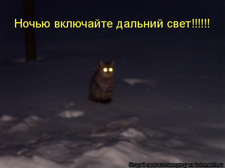 Котоматрица: Ночью включайте дальний свет!!!!!!