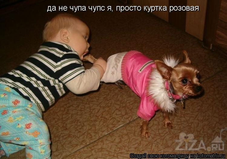 Котоматрица: да не чупа чупс я, просто куртка розовая