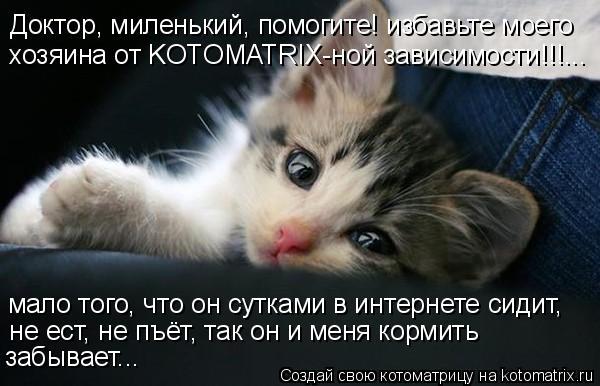 Котоматрица: Доктор, миленький, помогите! избавьте моего  хозяина от KOTOMATRIX-ной зависимости!!!... мало того, что он сутками в интернете сидит,  не ест, не пъёт