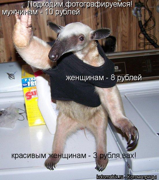 Котоматрица: Подходим,фотографируемся! мужчинам - 10 рублей женщинам - 8 рублей красивым женщинам - 3 рубля,вах!