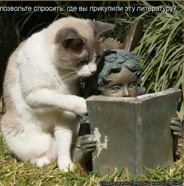 Котоматрица: позвольте спросить: где вы прикупили эту литературу?