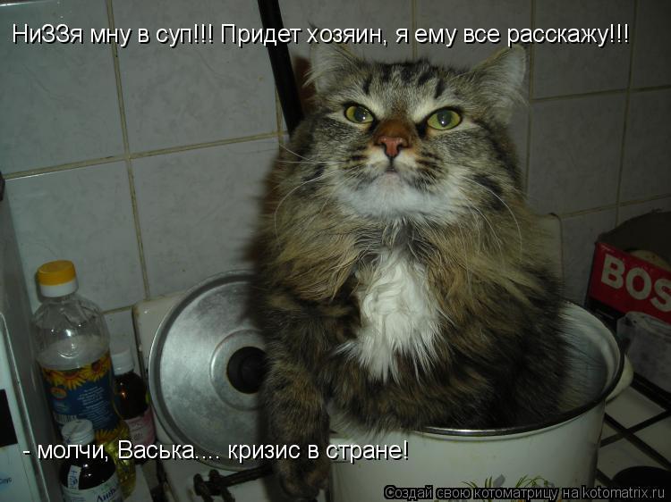 Котоматрица: НиЗЗя мну в суп!!! Придет хозяин, я ему все расскажу!!! - молчи, Васька.... кризис в стране!