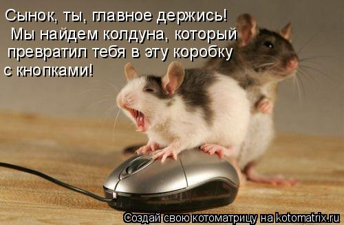 http://kotomatrix.ru/images/lolz/2009/01/18/VH.jpg
