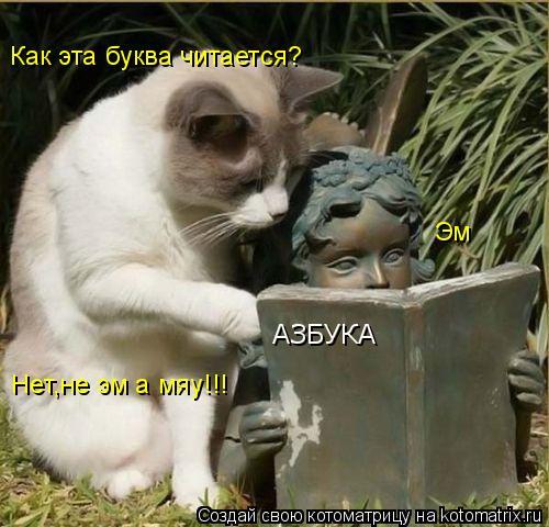 Котоматрица: АЗБУКА Как эта буква читается? Эм Нет,не эм а мяу!!!