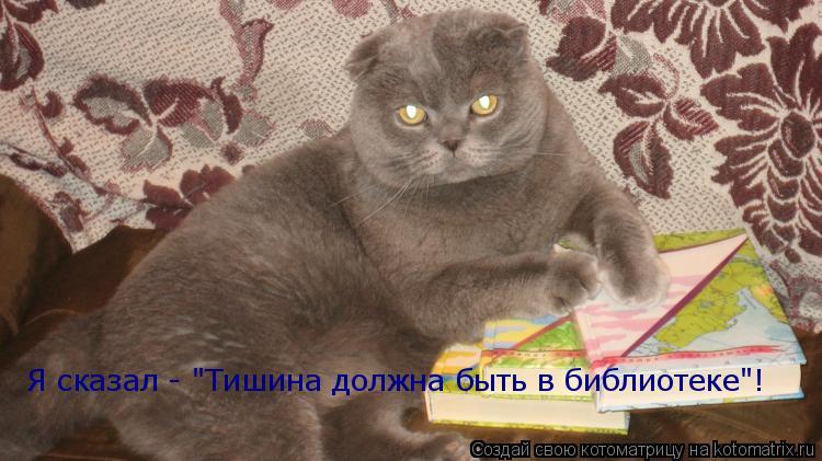 """Котоматрица: Я сказал - """"Тишина должна быть в библиотеке""""!"""