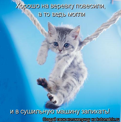Котоматрица: Хорошо на веревку повесили, а то ведь могли и в сушильную машину запихать!