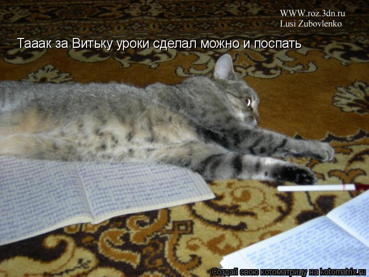 Котоматрица: Тааак за Витьку уроки сделал можно и поспать