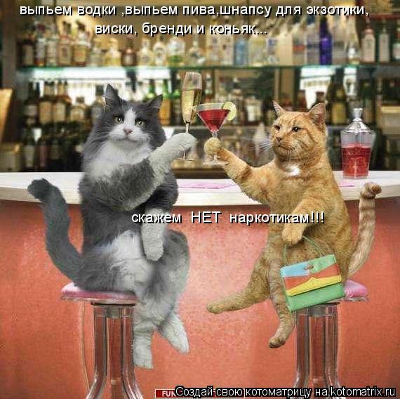 Котоматрица: виски, бренди и коньяк...  скажем  НЕТ  наркотикам!!! выпьем водки ,выпьем пива,шнапсу для экзотики,