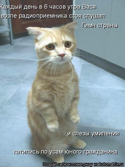 Котоматрица: Каждый день в 6 часов утра Вася  возле радиоприемника стоя слушал Гимн страны и слезы умиления катились по усам юного гражданина