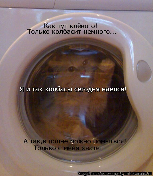 Котоматрица: Как тут клёво-о! Только колбасит немного... А так,в полне можно помыться! Только с меня хватет! Я и так колбасы сегодня наелся!