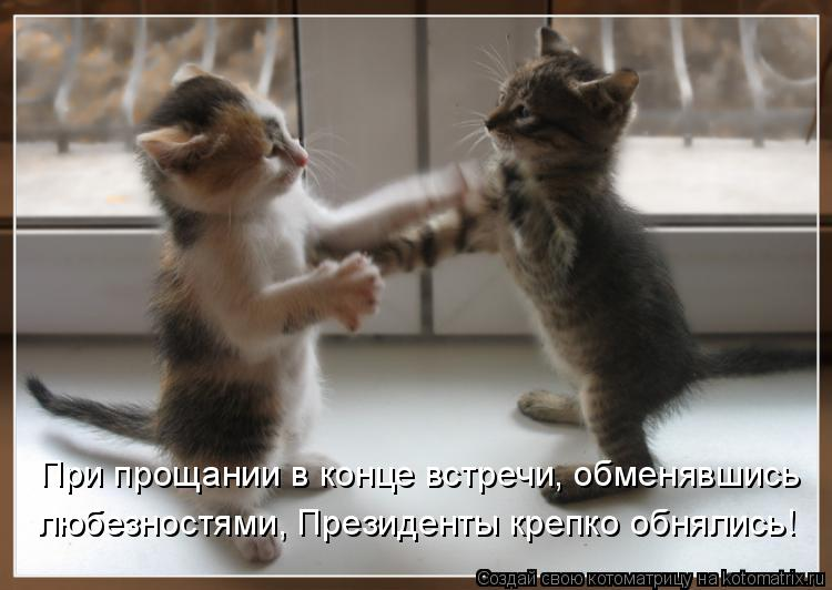 Котоматрица: При прощании в конце встречи, обменявшись  любезностями, Президенты крепко обнялись!
