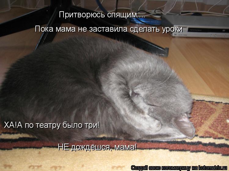Котоматрица: Притворюсь спящим.... Пока мама не заставила сделать уроки ХА!А по театру было три!  НЕ дождёшся, мама!