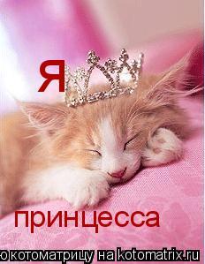 Котоматрица: я принцесса