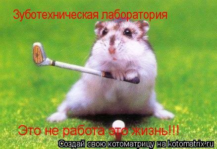 Котоматрица: Зуботехническая лаборатория Это не работа  Это не работа это жизнь!!!