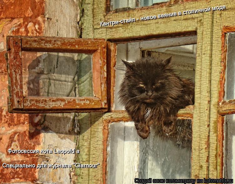 """Котоматрица: Кантри-стайл - новое веяние в столичной моде Фотосессия кота Leopold`а Специально для журнала """"Glamour"""""""