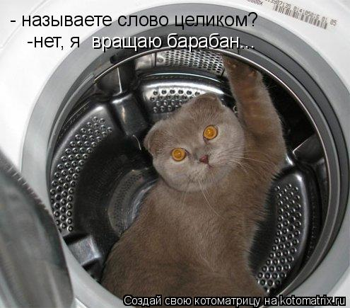 Котоматрица: - называете слово целиком?  вращаю барабан...  -нет, я