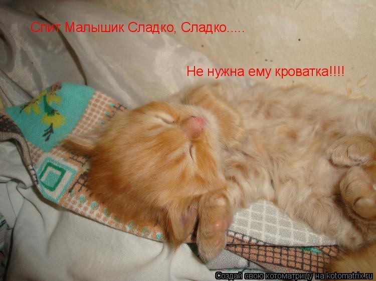Котоматрица: Спит Малышик Сладко, Сладко..... Не нужна ему кроватка!!!!