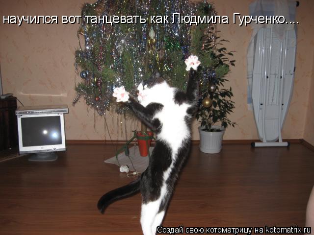 Котоматрица: научился вот танцевать как Людмила Гурченко....