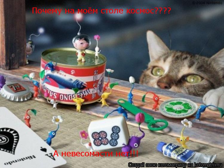 Котоматрица: Почему на моём столе космос???? А невесомасти нет!!!