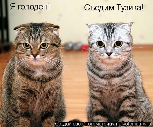 Котоматрица: Я голоден! Съедим Тузика!