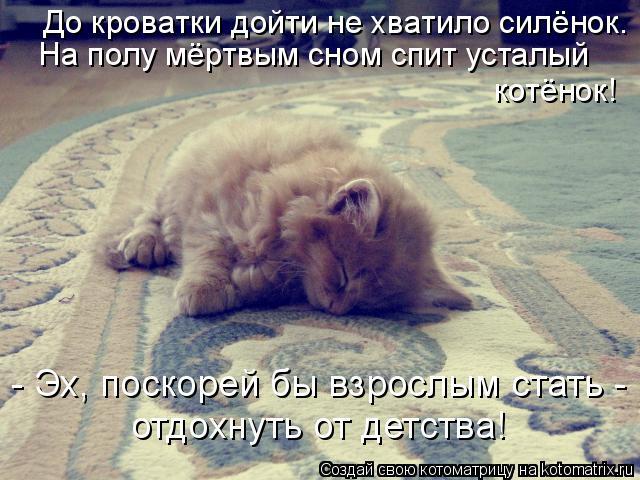 Котоматрица: До кроватки дойти не хватило силёнок. На полу мёртвым сном спит усталый котёнок! - Эх, поскорей бы взрослым стать - отдохнуть от детства!