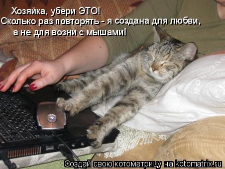 Котоматрица: Хозяйка, убери ЭТО! Сколько раз повторять -  я создана для любви,   а не для возни с мышами!
