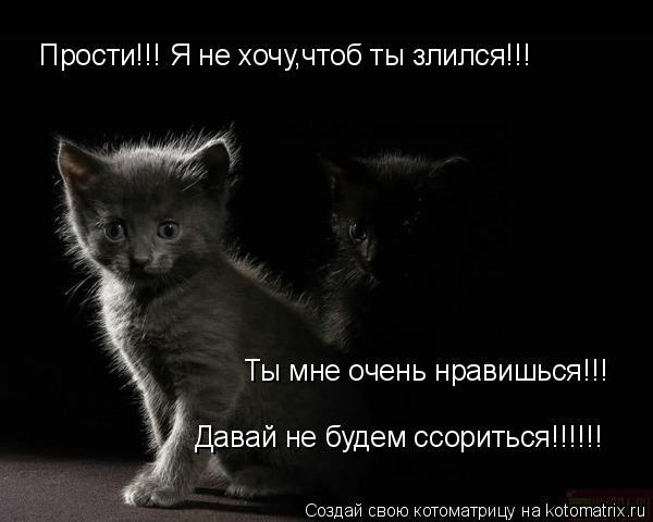 Котоматрица: Прости!!! Я не хочу,чтоб ты злился!!! Ты мне очень нравишься!!! Давай не будем ссориться!!!!!!