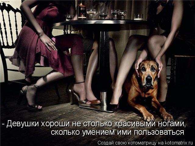 Котоматрица: - Девушки хороши не столько красивыми ногами,  сколько умением ими пользоваться
