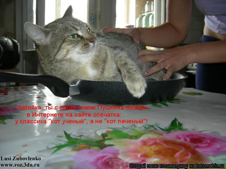 """Котоматрица: Хозяйка, ты с полки томик Пушкина возьми,   в Интернете на сайте опечатка:   у классика """"кот ученый"""", а не """"кот печеный""""!"""