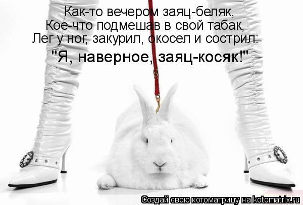 """Котоматрица: Как-то вечером заяц-беляк, Кое-что подмешав в свой табак, Лег у ног, закурил, окосел и сострил: """"Я, наверное, заяц-косяк!"""""""