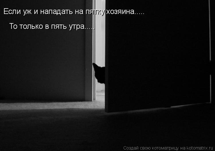 Котоматрица: Если уж и нападать на пятку хозяина..... То только в пять утра.....