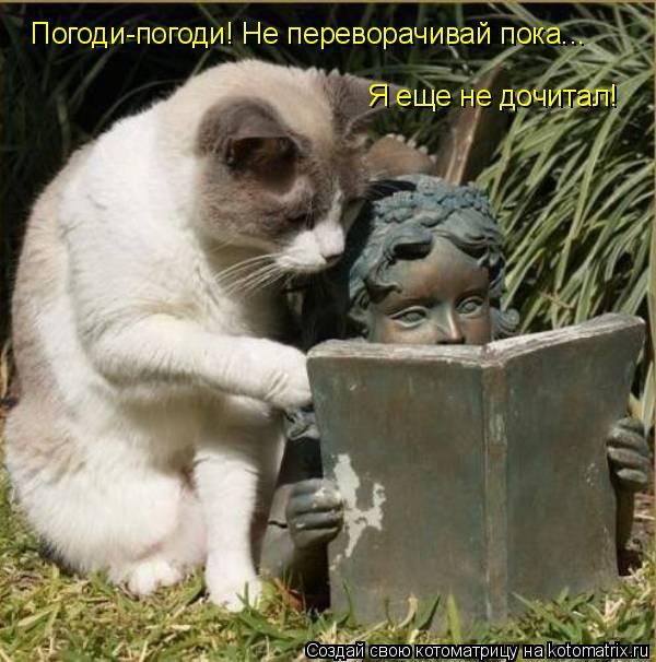 Котоматрица: Погоди-погоди! Не переворачивай пока... Я еще не дочитал!