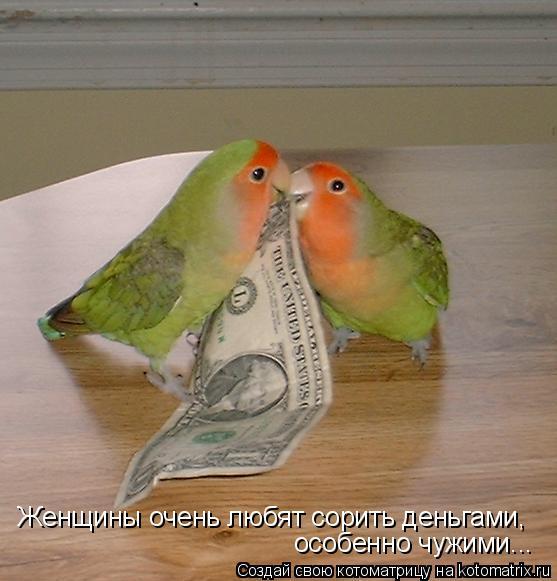 Котоматрица: Женщины очень любят сорить деньгами, особенно чужими...
