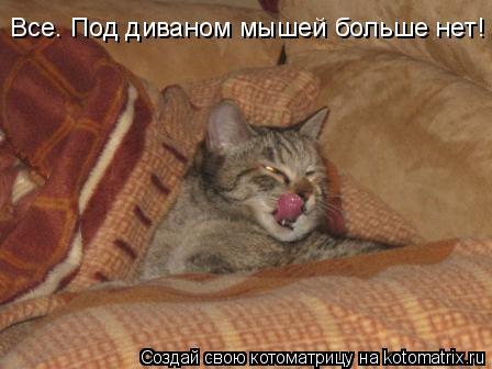 Котоматрица: Все. Под диваном мышей больше нет!