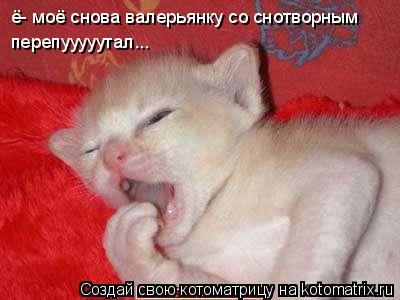Котоматрица: ё- моё снова валерьянку со снотворным  ё- моё снова валерьянку со снотворным перепууууутал... перепууууутал...